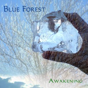 Image for 'Awakening'