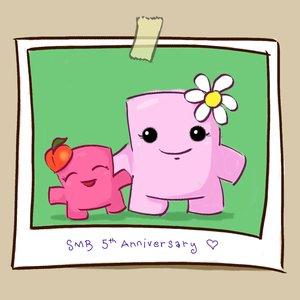 Bild für 'Super Sweet Boy: Music from SMB 5th Anniversary'