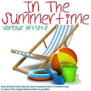 Bild för 'In The Summertime'