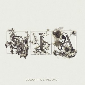 Image for 'Colour The Small One (International non EU version)'