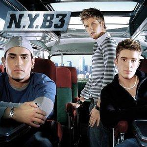 Image for 'N.Y.B3'