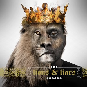 Image for 'Lions and Liars'