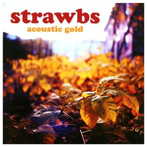 Image for 'Acoustic Gold'