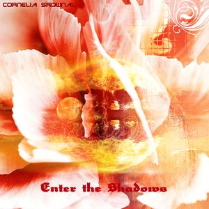 Image for 'Enter the Shadows'