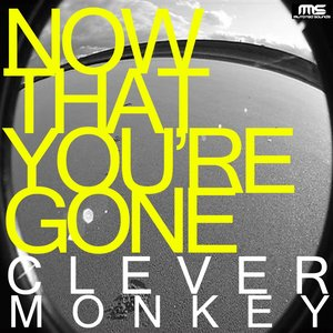 Image for 'Now That You're Gone'