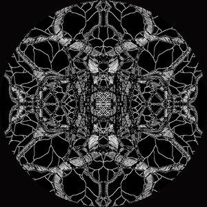 Imagem de 'Iteration (Oscar Mulero Remix)'