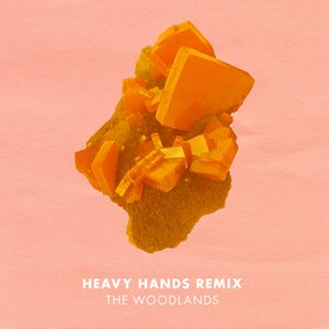 Image for 'Heavy Hands Remix'