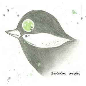 Image for 'prespring'