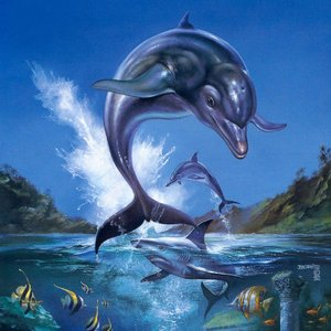 Image for 'Ecco the Dolphin'