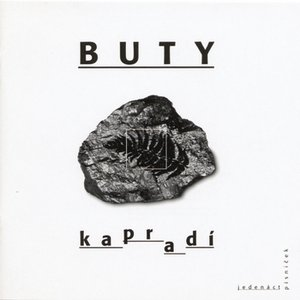 Image for 'Kapradi'