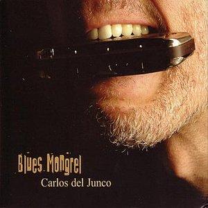 Immagine per 'Blues Mongrel'