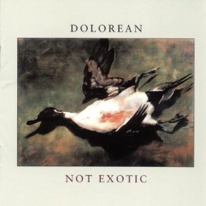 Image for 'Not Exotic'