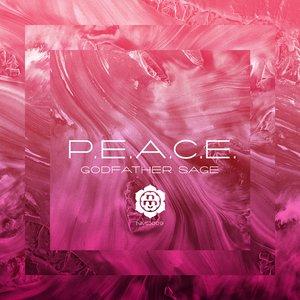 Image for 'P.E.A.C.E. (Nature Rage Remix)'