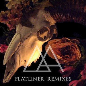 Image for 'FLATLINER REMIXES'
