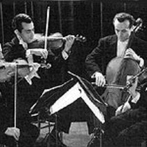 Immagine per 'New Budapest Quartet'