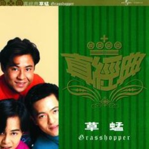 Image for 'Zhen Jin Dian - Grasshopper'