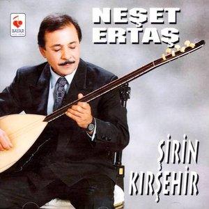Image for 'Dertli Yoldaş'
