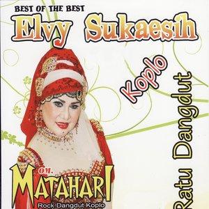 Image for 'Best of the Best Elvy Sukaesih (feat. OM. Matahari) [Ratu Dangdut]'