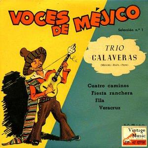 Imagen de 'Vintage México Nº25- EPs Collectors'