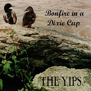 Image for 'Bonfire in a Dixie Cup'
