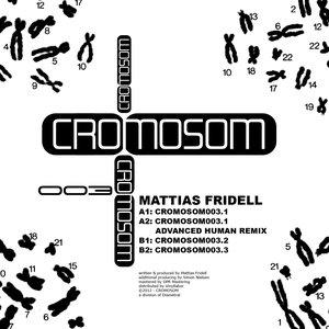 Bild för 'Cromosom003'