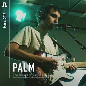 Image for 'Palm on Audiotree Live'