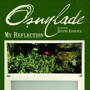 Image for 'My Reflection'