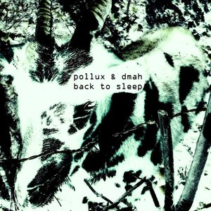 Image for 'Pollux & DMAH - Back To Sleep'