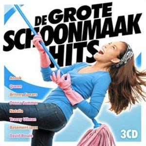 Image for 'De grote Schoonmaak Hits'