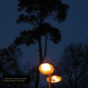 Bild für 'Already Awake In The Night'