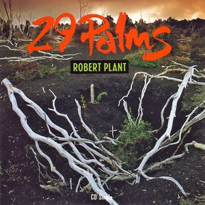 Image for '29 Palms'