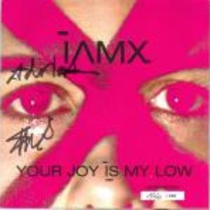 Image for 'Your Joy Is My Low'