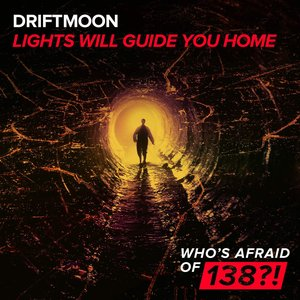 Image for 'Lights Will Guide You Home'