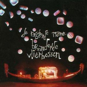 Image for 'Brandende vlierbessen'