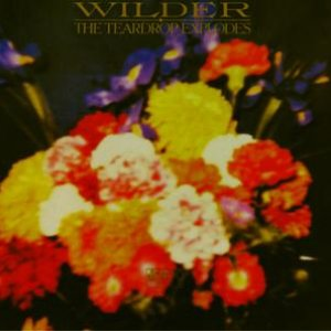 Image for 'Wilder'