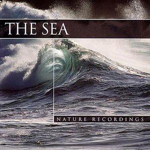 Bild für 'The Sea'