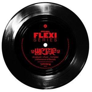Image pour 'Decibel Flexi Series'