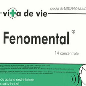 Image for 'Fenomental'