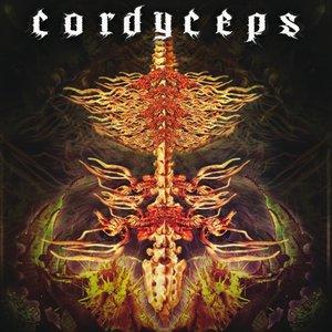 Image for 'Cordyceps'