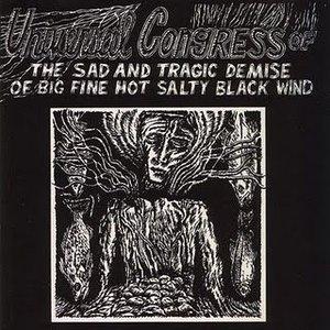Immagine per 'The Sad and Tragic Demise of Big Fine Hot Salty Blackwind'