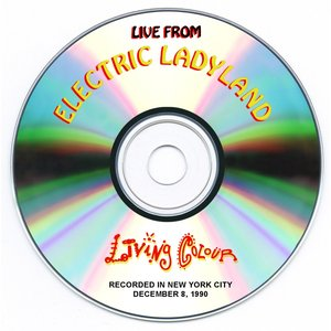 Image for 'Live from Electric Ladyland'