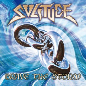 Image for 'BRAVE THE STORM'