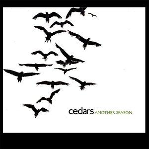 Bild für 'Another Season'