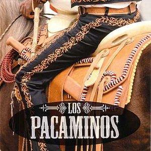 Image for 'Los Pacaminos'