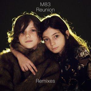 Bild für 'Reunion: Remixes'