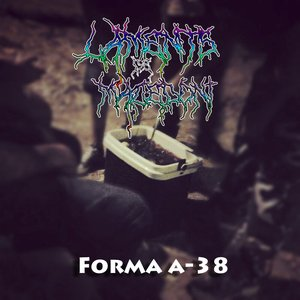 Image for 'Forma A-38'