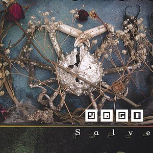 Image for 'Salve'