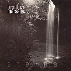 Image for 'Eternal'