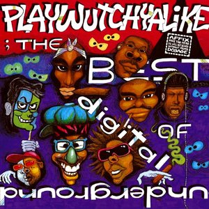 Image for 'Playwutchyalike: The Best Of Digital Underground'