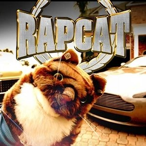 Image for 'Rap Cat'